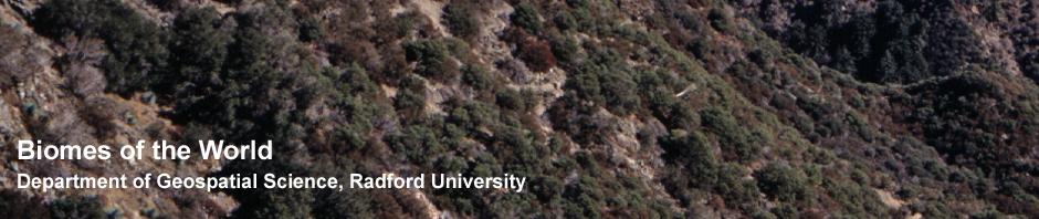 Mediterranean banner