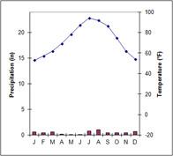climograph: BWh